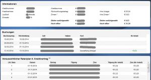 Auxmonex Kreditprojekt Plan Beispiel